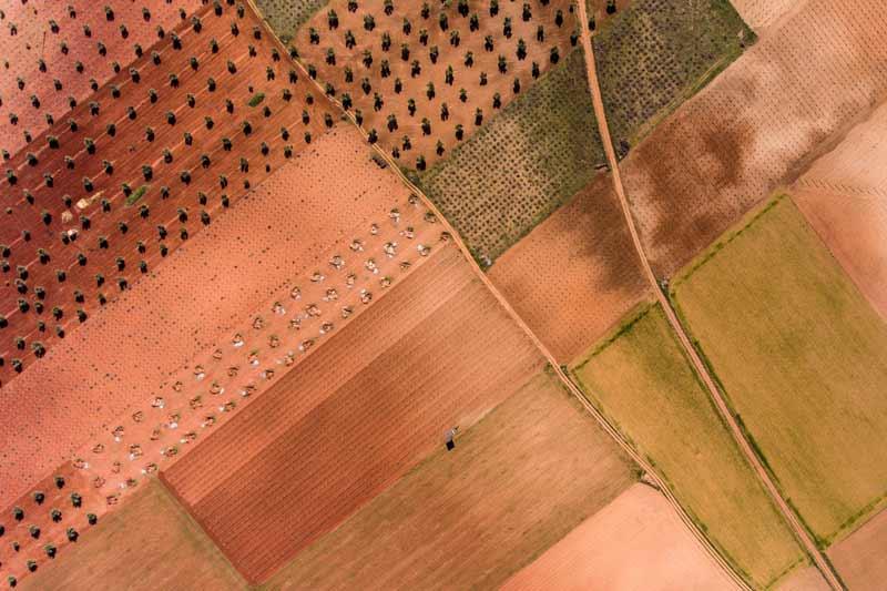 Uso de drones para agricultura