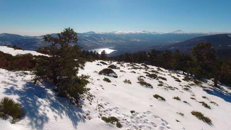 Guía de compras de drones para navidad 2021